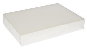 Kopieerpapier ft A4, 75 g, pak van 500 vel